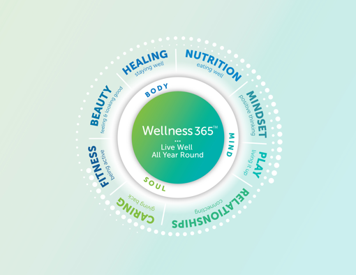 wellness-wheel-365