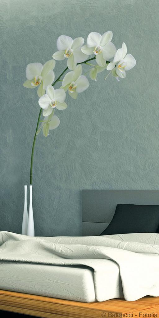 Home decor image via flickr user Plage Vinilos y Adhesivos