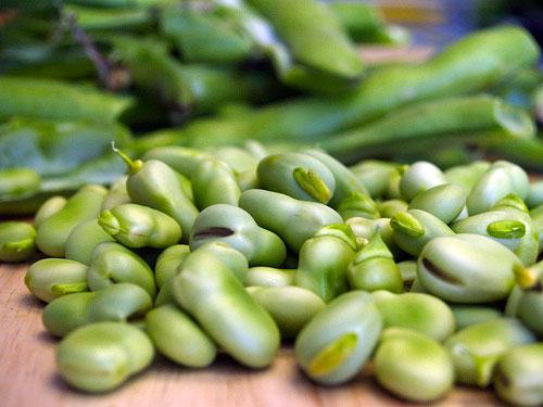 Fava-beans-photo-via-Flickr-user-luvjnx