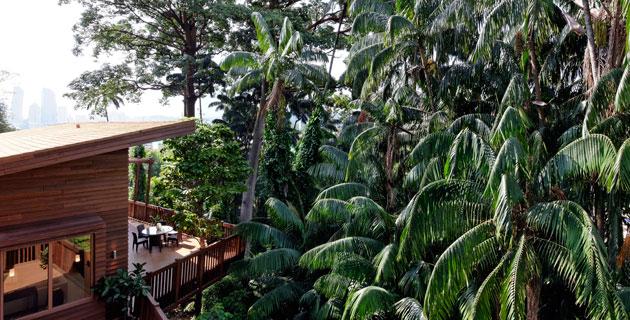 Tree-Top-Lofts---Exterior