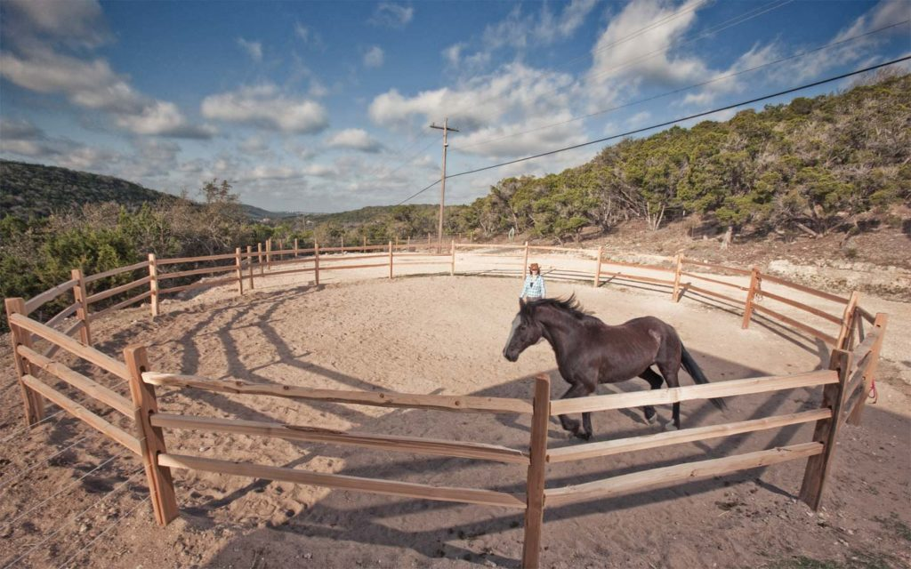 Equine Travaasa