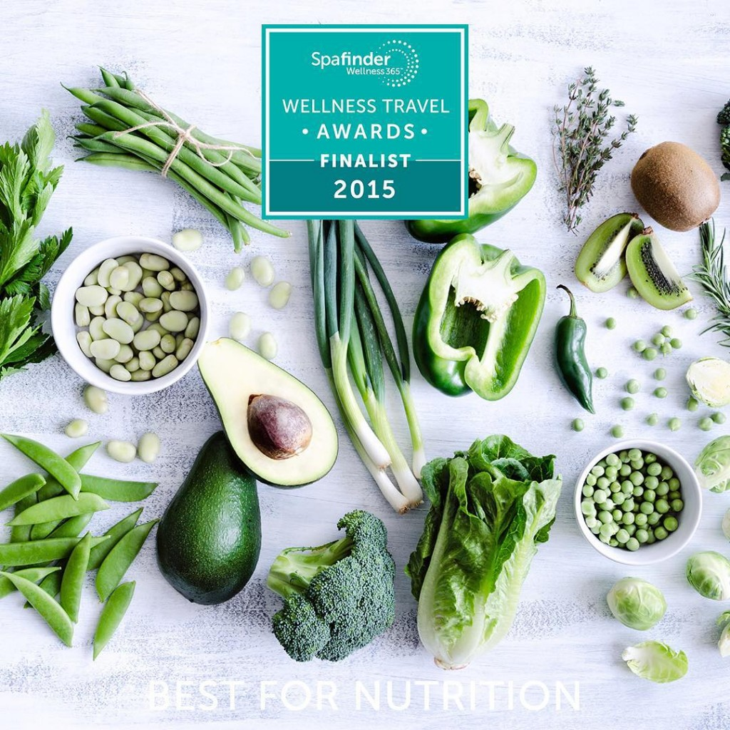 Our WTA2015 BestinNutrition finalists know that every wellness travel adventurehellip