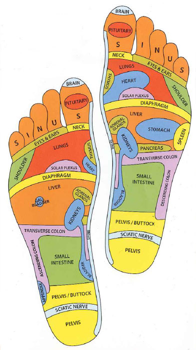 Reflexology 101 Not Just A Foot Massage