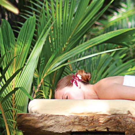 Isla Palenque, Amble Resorts (Panama) encourages guests to connect with nature by offering spa treatments in a shady palm grove.