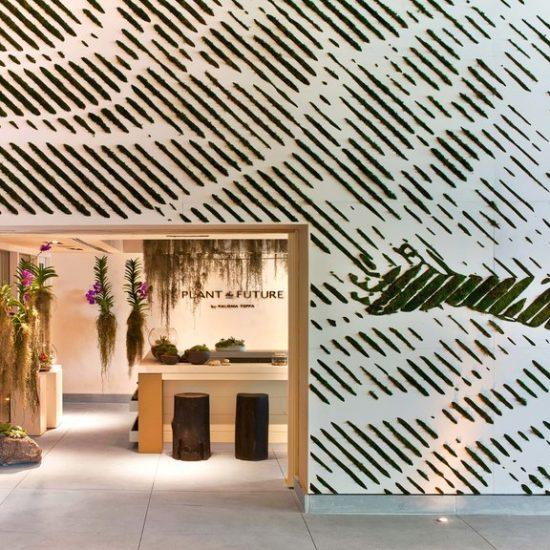 1 hotel south beach x plant the future