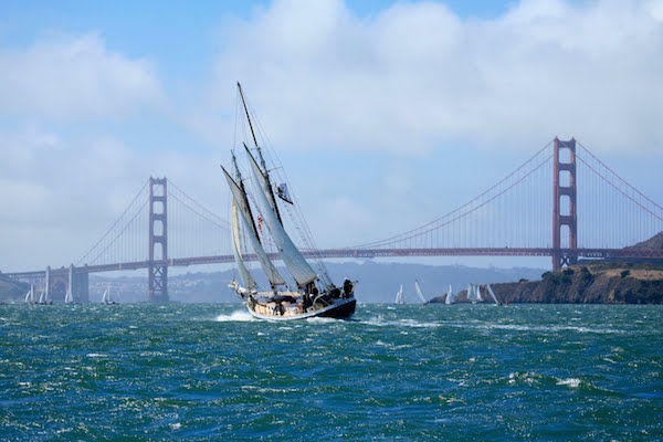 madrona sailing