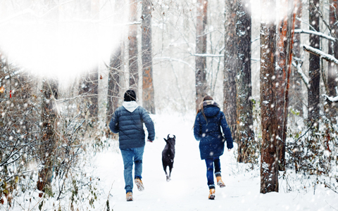man and woman walking through snowy forest along with a dog